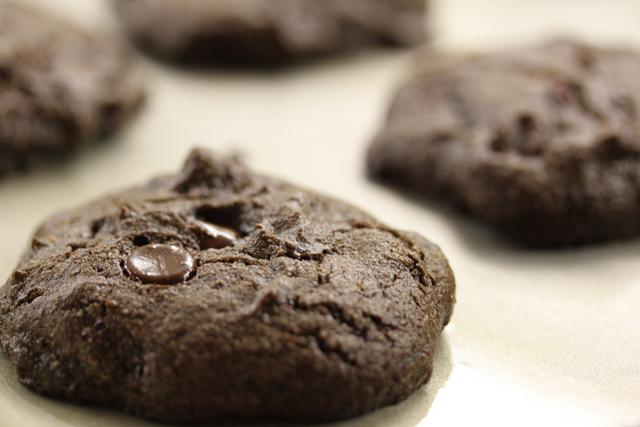 Karob a zdraví – zkuste ho místo čokolády či kakaa