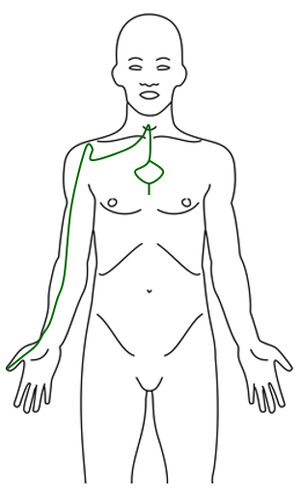 Meridiánové masáže a meridiánové body (meridiány) a jejich mapa v lidském těle