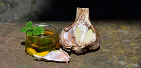 Česnekový olej je vynikající pro naše zdraví