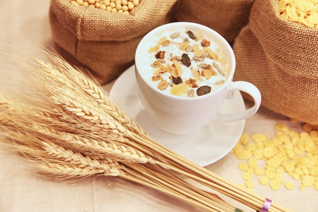 Oves a zdraví – je bohatým zdrojem vlákniny