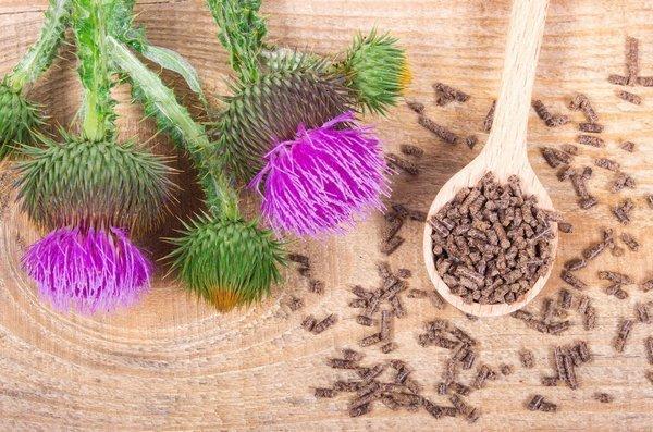 Detoxikace jater – jak na to?