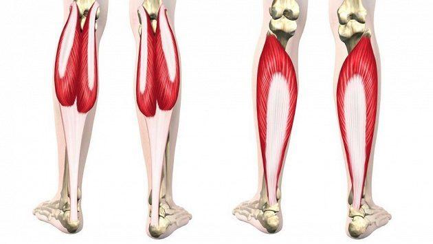 Bolesti spodních části zad – jak na ně?