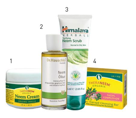 Neemový či nimbový olej a zdraví – na pleť, vlasy i jako desinfekce