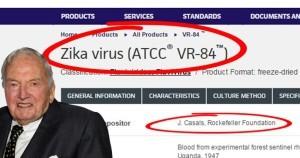 Virus Zika je v Česku! Jsou obavy na místě?