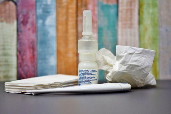 Jak se zbavit alergií? Jak léčit alergii čistě přírodně? Poradíme vám.