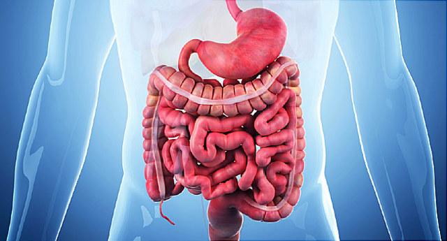 Crohnova choroba – co to je – příznaky, příčiny a léčba