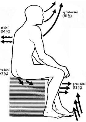 Termoterapie – léčba teplem – přehled procedur