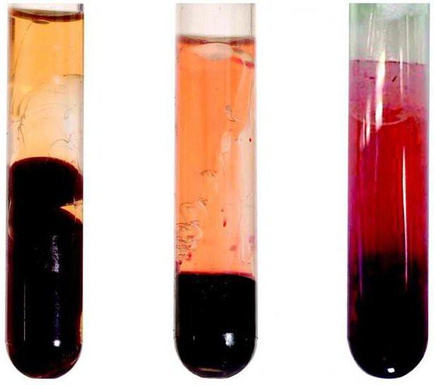 Krevní plazma jaké má složení? A co dárcovství plazmy?