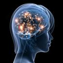 Prolaktin – jeho funkce, zvýšené hodnoty, léčba vysokých hodnot prolaktinu