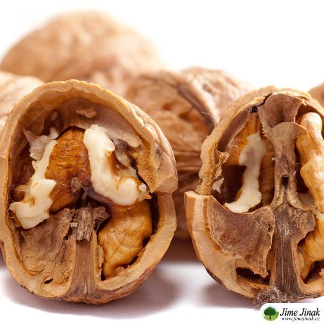 Vlašské ořechy – super pro Váš mozek i zdraví