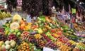 Dieta, detoxikace a stravování podle Antonie Mačingové