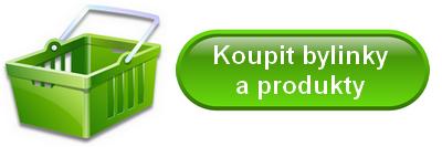 Kozinec blanitý (Astragalus) a jeho léčivé účinky – na co je dobrý?