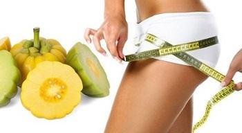 Hoodia gordonii (P57) a zdraví – může pomoci v hubnutí?
