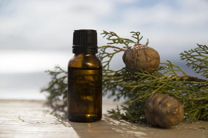 Cypřišový olej a jeho využití – skvělý nejen na křečové žíly