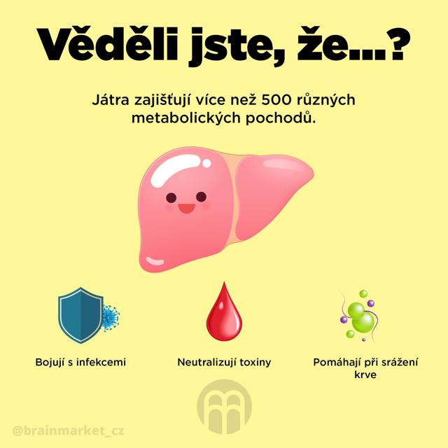 Rukola a zdraví – podporuje imunitní systém