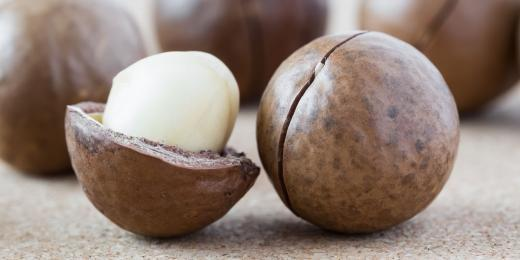 Kokosové máslo a zdraví – mimořádně vhodné pro ošetřování pokožky