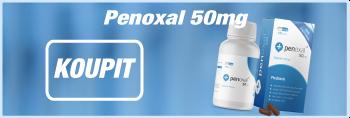 Zánět močového měchýře (Cystitida) – příznaky, příčiny a léčba