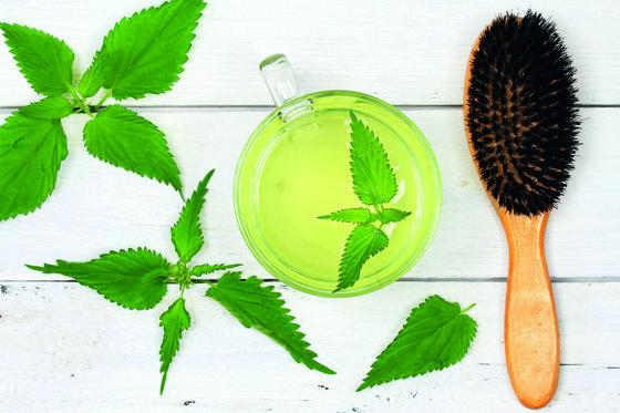 Bylinky pro krásné a zdravé vlasy – které použít?