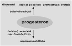 Estrogen a progesteron – jakou funkci mají ženské pohlavní hormony?