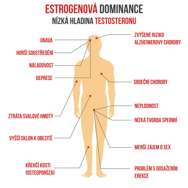 Jak zvýšit hladinu testosteronu? Mohou pomoci správné návyky i bylinky