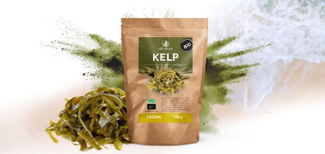 Kelp a zdraví – s těmito mořskými řasami budeme fit